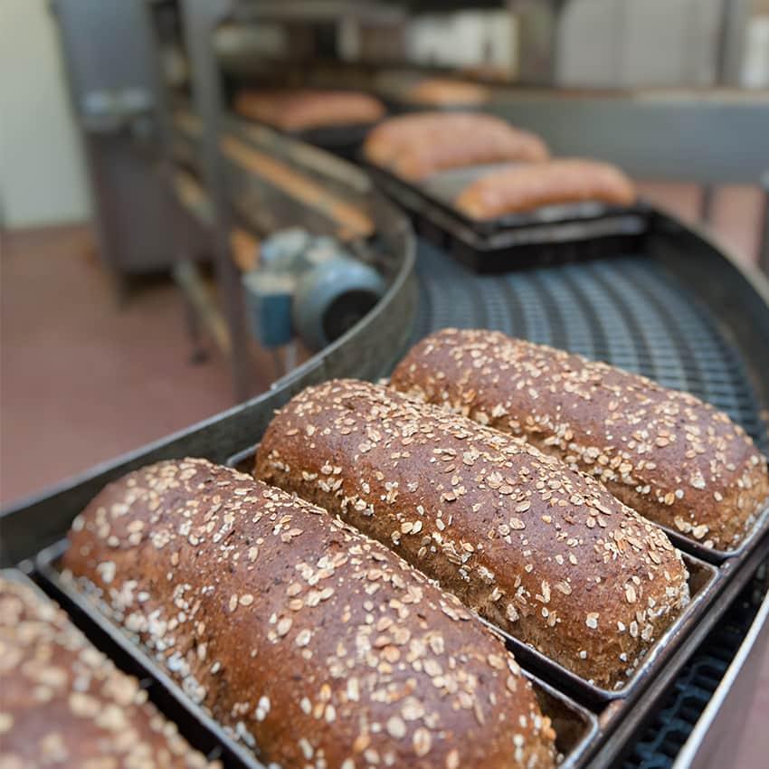https://www.honeysource.com/wp-content/uploads/2021/05/bread-conveyor.jpg